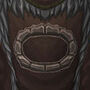 Tabard of the Earthen Ring.jpg