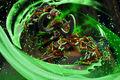 Demon Hunter by Jarreau Wimberly.jpg