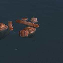 Shipwreck Debris