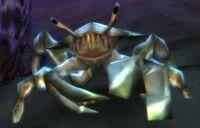 Imagen de Crustáceo espinoso