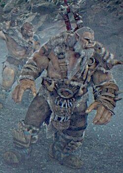 Warcraft movie - Frostwolf orc.jpg