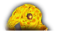 Boss icon Ambershaper Unsok.png