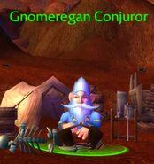 Gnomeconjuror