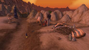 Valor's Rest in Silithus the Wound
