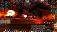 Paladin Tanking Onyxia - Onyxia's Lair (Level 80) - World of Warcraft-0