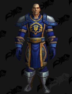 797200-stormwind-guard-mail-leather.jpg