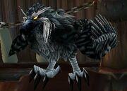 Daggercap Hawk.jpg