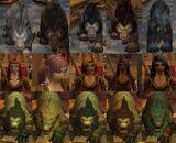 Druid-Hair-Animal