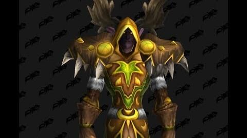 Stormrage_Raiment_-_Druid_T2_Tier_2_-_World_of_Warcraft_Classic_Vanilla