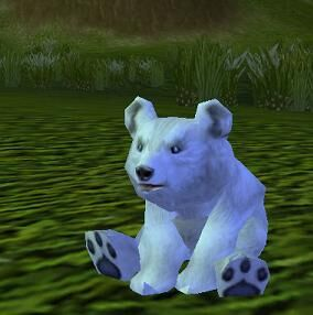 Image of Baby Blizzard Bear