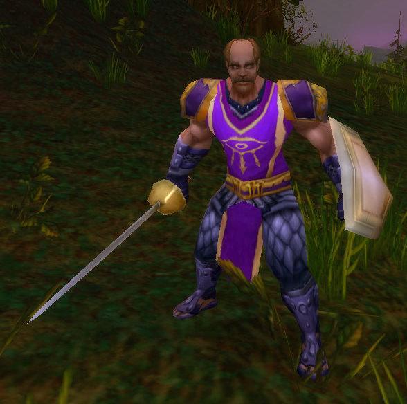 Dalaran Shield Guard
