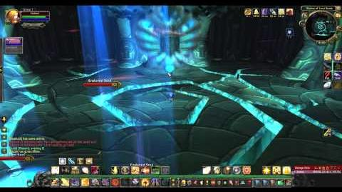 How to Solo The Black Temple 8 8, MoP Paladin HD