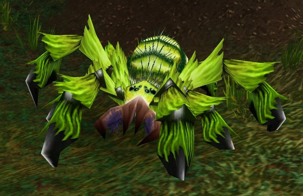 Forest Moss Creeper
