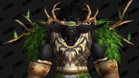 Cenarion_Raiment_-_Druid_T1_Tier_1_-_World_of_Warcraft_Classic_Vanilla