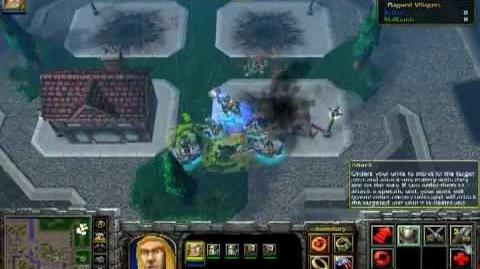 ParaFreak Warcraft III Reign of Chaos The Culling