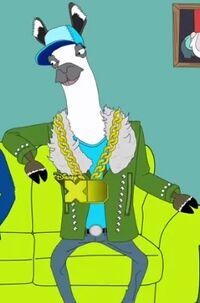 Steve the Llama.jpg