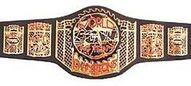 ECWtagbelt.jpg
