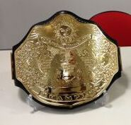Wrestling New Classic Championship
