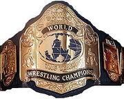 NWA World Tag Team Titles.jpg