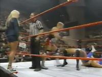 WWF 199 04-29 (4)