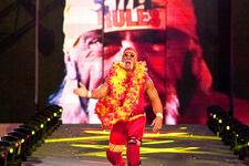 Hulk Hogan 2003