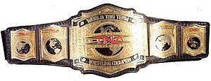 TNA World Tag Team Championhip