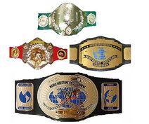 WWE IC Title History.jpg