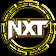 WWE NXT Button
