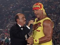Hulk Hogan 1995