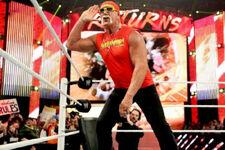 Hulk Hogan Raw25