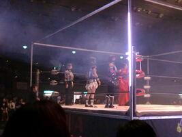 Big Japan Pro Wrestling 03