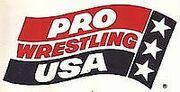 Pro Wrestling USA.jpg