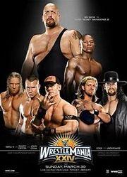 WrestleMania24.jpg