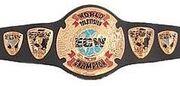 ECWworldtvbelt.jpg