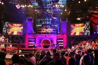 TNA Impact Red.jpg