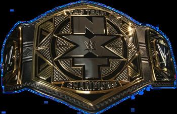 NXT Tag Team Championship 2017