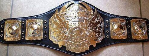 TNA World Heavyweight Championship 2007