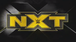NXT USA Graphic