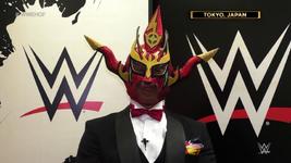 WWEHOF2020 (3)