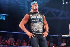 Hulk Hogan TNA 02
