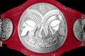 Raw Tag Team Championship 2017