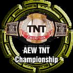 All Elite Wrestling TNT Championship