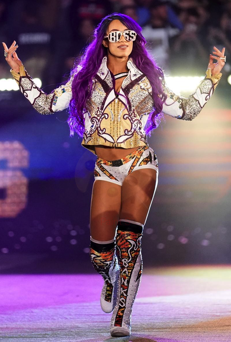 Sasha Banks Wrestling Jat Wiki Fandom