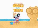 Walden on the Beach