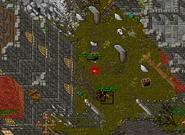 Zrzut ekranu 2021-02-13 o 13.58.46