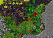 Zrzut ekranu 2021-02-16 o 23.39.54