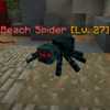 BeachSpider.png