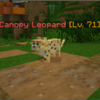 CanopyLeopard.png