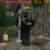 SkeletonReaper.png