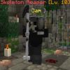 SkeletonReaper.png
